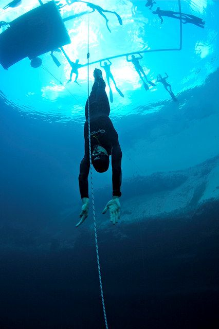 Disciplines – Australian Freediving Association